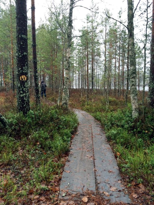 2015 6 lake walk 2