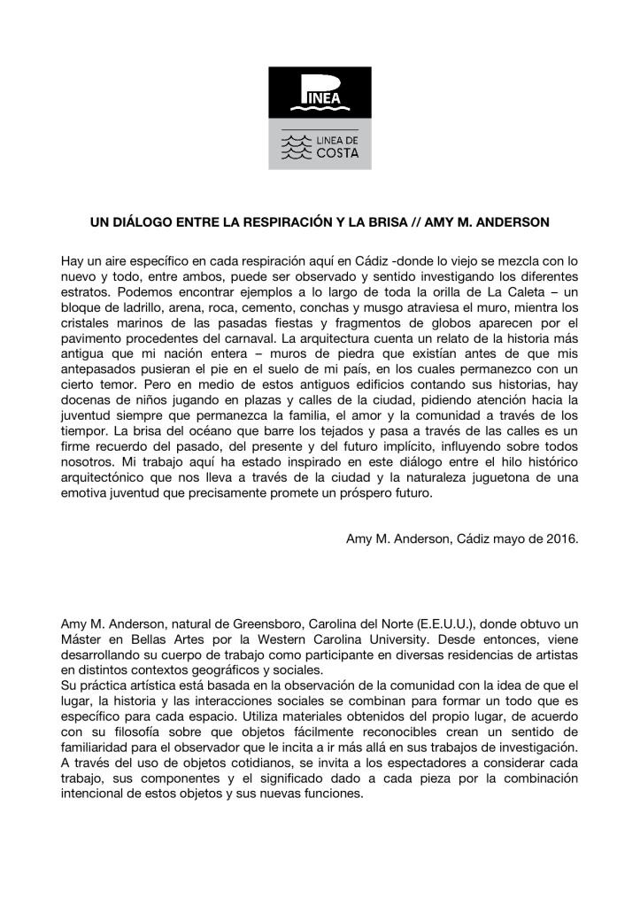 HOJA DE SALA A4 AMY M ANDERSON