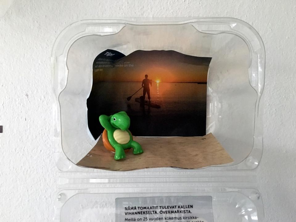 2016 08 plastic turtle