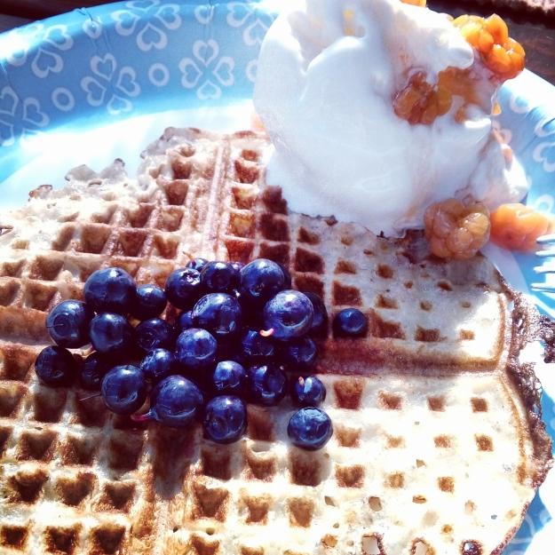 2016 k waffle